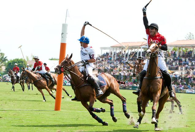 Inside Polo by Ron Allen