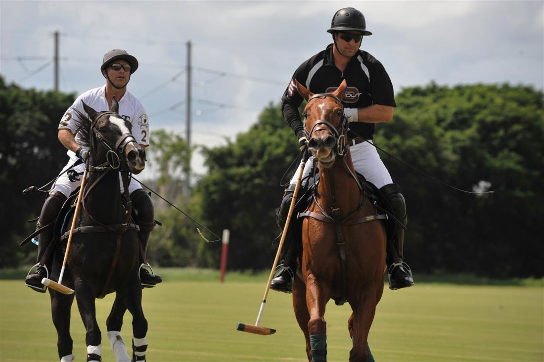 piaget vs flat out grand champion polo