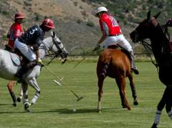 Mandarina, Woodrow Farm Play Sunday In Triple Crown Of Polo Tournament At Aspen Valley Polo Club